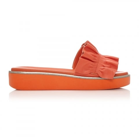 Padina Coral Leather
